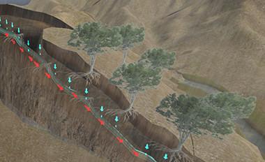南方山区浅层滑坡植物防治虚拟仿真实验