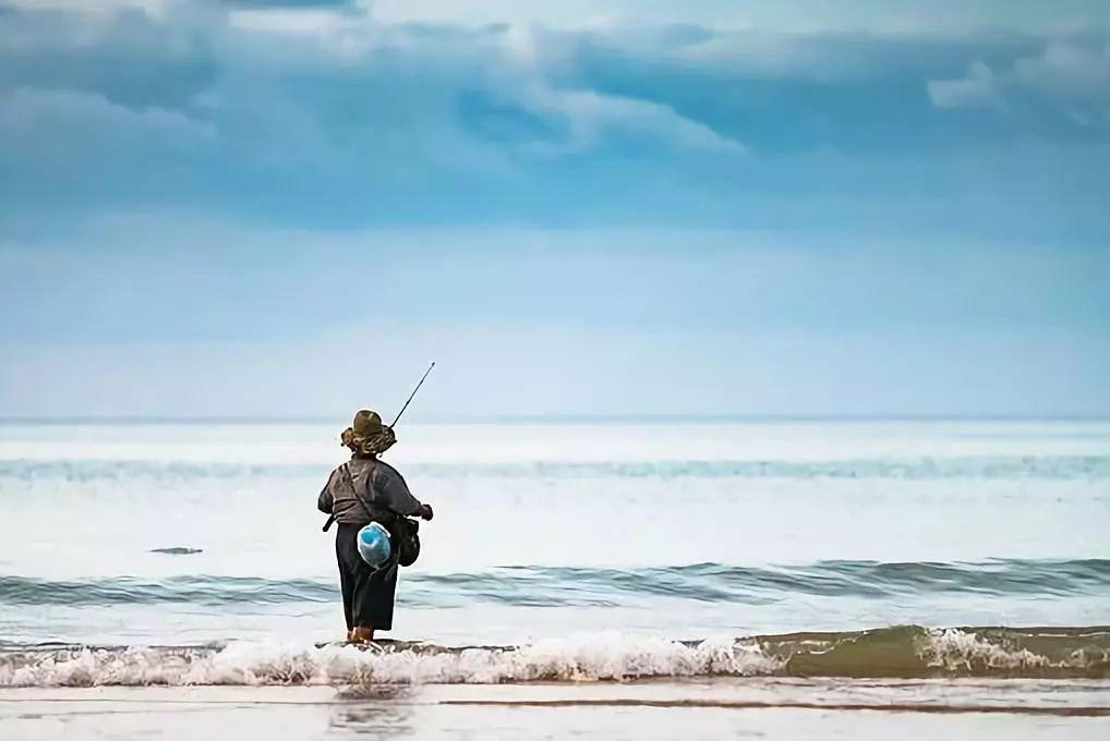 虚拟仿真教学项目建设 —— 授之以鱼,不如授之以渔